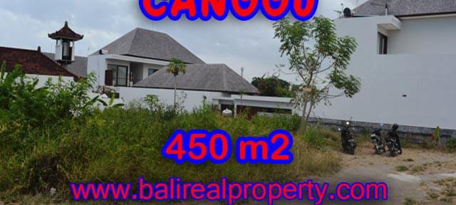 Tanah di Canggu dijual 4,5 are View sawah di Batu Bolong