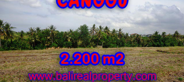 TANAH DIJUAL DI BALI 2,200 m2 di Tumbak Bayuh