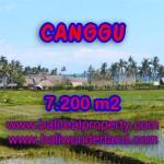Tanah di Bali dijual 72 Are di Canggu pererenan