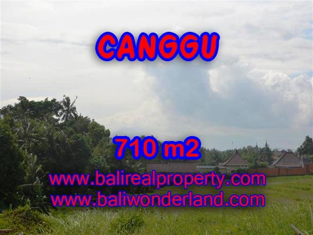 Tanah dijual di Bali 710 m2 view sawah dan sungai di Canggu Brawa