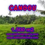 Jual tanah di Canggu Bali 1,500 m2 dekat sungai di Canggu pererenan