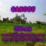 INVESTASI PROPERTI DI BALI - DIJUAL MURAH TANAH DI CANGGU BALI TJCG135