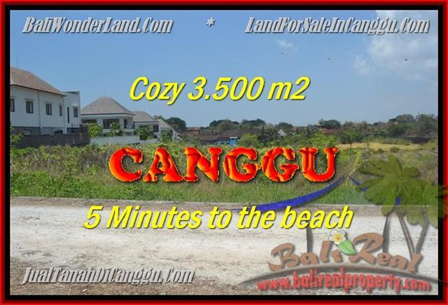 DIJUAL MURAH TANAH di CANGGU BALI 35 Are di Canggu Kayutulang