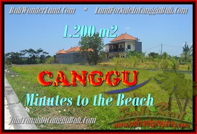 TANAH DIJUAL MURAH di CANGGU TJCG166
