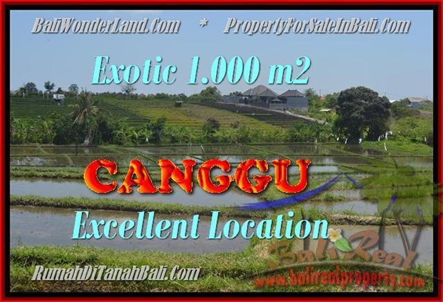 TANAH di CANGGU JUAL MURAH 10 Are View sawah dan laut linkungan villa