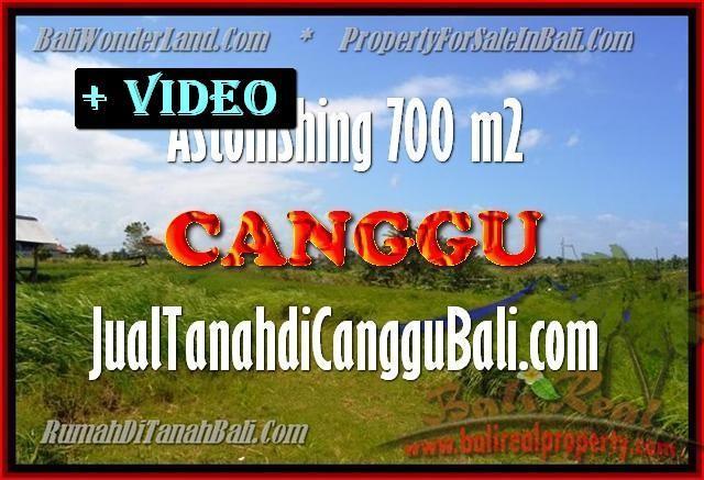 TANAH di CANGGU DIJUAL MURAH Untuk INVESTASI TJCG155