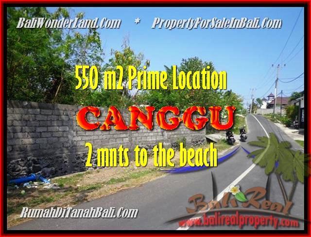 TANAH di CANGGU JUAL MURAH 550 m2 lingkungan villa