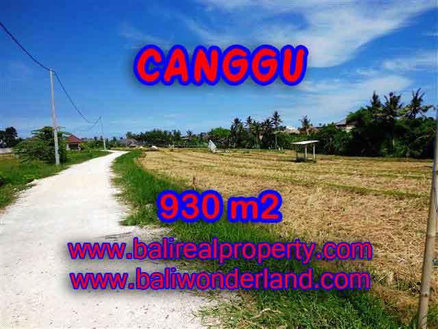 DIJUAL TANAH di CANGGU TJCG146