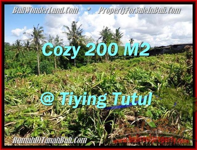 TANAH di CANGGU JUAL MURAH 200 m2 View sawah dan kebun pandan
