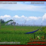 TANAH di CANGGU BALI DIJUAL MURAH 2.000 m2 di Canggu Cemagi