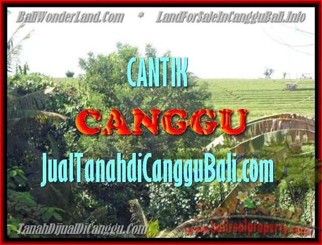 JUAL MURAH TANAH di CANGGU BALI 17 Are View sawah dan sungai