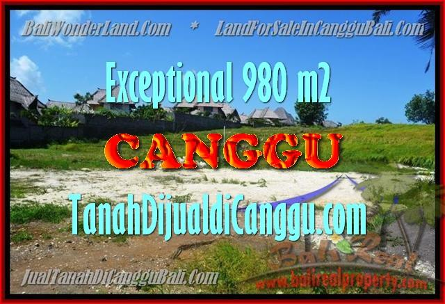 TANAH MURAH DIJUAL di CANGGU 980 m2 di Canggu Pererenan