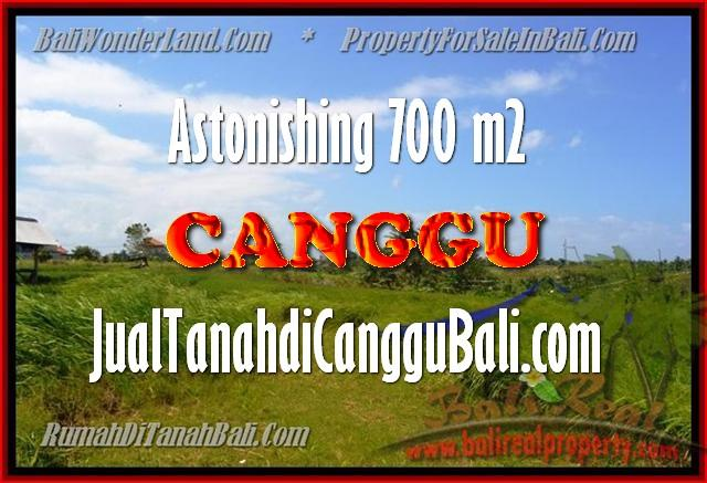 DIJUAL MURAH TANAH di CANGGU BALI 700 m2 di Canggu Kayutulang