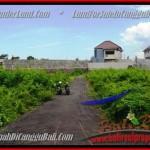 TANAH MURAH di CANGGU BALI DIJUAL 3,35 Are di Canggu Pererenan