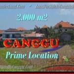 JUAL TANAH di CANGGU BALI 2.000 m2 di Canggu Kayutulang