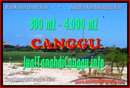 DIJUAL MURAH TANAH di CANGGU 300 m2 di Canggu Batu bolong
