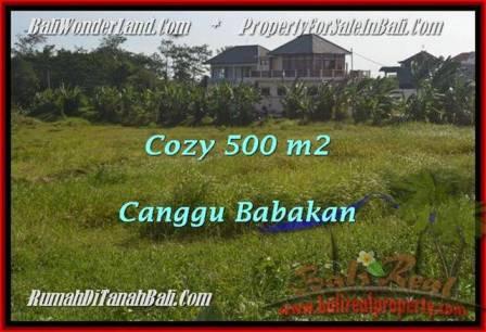TANAH MURAH di CANGGU BALI DIJUAL 5 Are di Canggu Batu Bolong