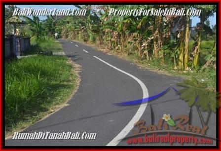 TANAH di CANGGU DIJUAL MURAH 5 Are di Canggu Batu Bolong