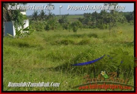 TANAH di CANGGU BALI DIJUAL MURAH 500 m2 di Canggu Batu Bolong