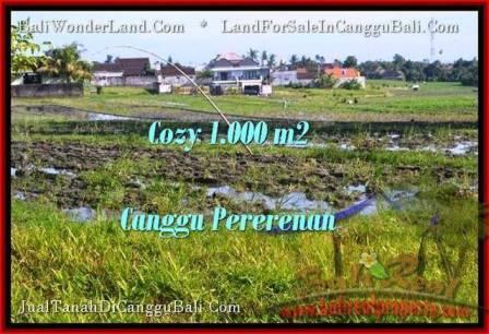 JUAL TANAH MURAH di CANGGU BALI 10 Are View sawah link villa