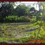 DIJUAL MURAH TANAH di CANGGU Untuk INVESTASI TJCG177
