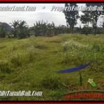 JUAL TANAH di CANGGU 500 m2 View laut dan sawah link villa