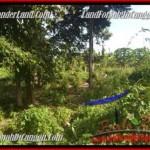 TANAH DIJUAL di CANGGU BALI 500 m2 View sawah link villa