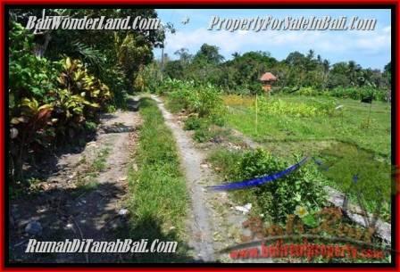 JUAL TANAH MURAH di CANGGU BALI 10 Are View Sawah
