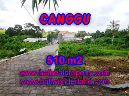 TANAH DIJUAL di CANGGU BALI Untuk INVESTASI TJCG150