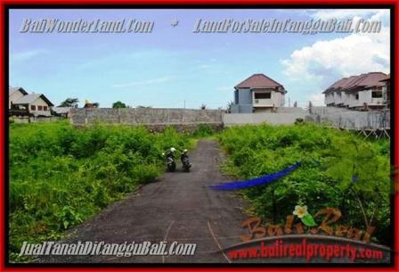 JUAL TANAH di CANGGU 335 m2 view alami