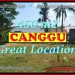 DIJUAL TANAH MURAH di CANGGU BALI 4,5 Are di Canggu Pererenan