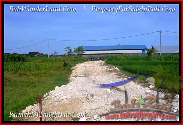 TANAH MURAH di CANGGU JUAL 300 m2 View sawah lingkungan villa
