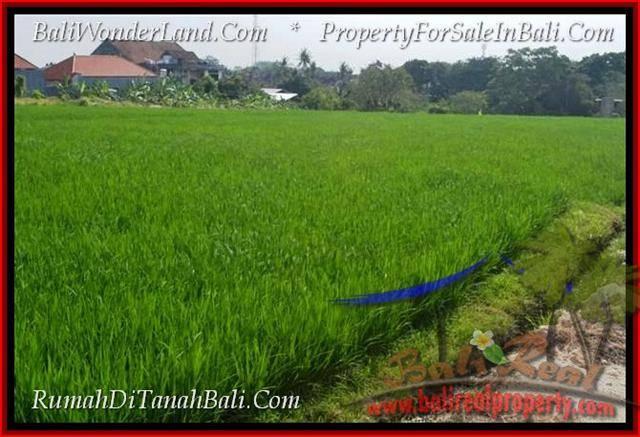 JUAL MURAH TANAH di CANGGU BALI 3 Are View sawah lingkungan villa