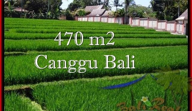 JUAL TANAH MURAH di CANGGU BALI 4.7 Are View sawah, sungai, lingkungan villa
