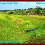 TANAH MURAH di CANGGU JUAL 400 m2 View sawah, lingkungan villa