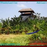 TANAH MURAH di CANGGU 5.8 Are View sawah, lingkungan villa