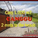TANAH MURAH di CANGGU JUAL 10 Are View Sawah dan sungai , lingkungan villa