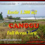 TANAH MURAH di CANGGU JUAL 13 Are View sawah dan laut lingkungan villa