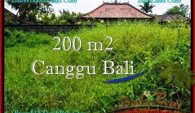 TANAH MURAH di CANGGU 2 Are Lingkungan villa
