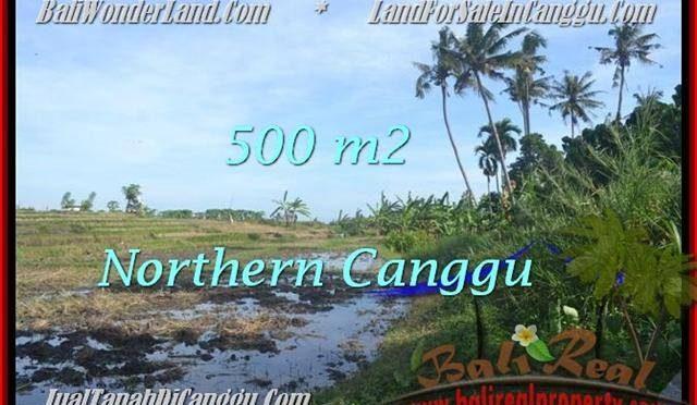 JUAL MURAH TANAH di CANGGU BALI 500 m2 View sawah link villa