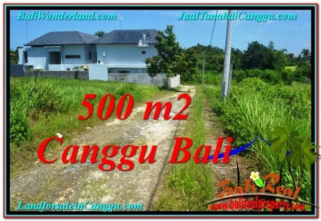TANAH DIJUAL di CANGGU 500 m2 View sawah lingkungan villa