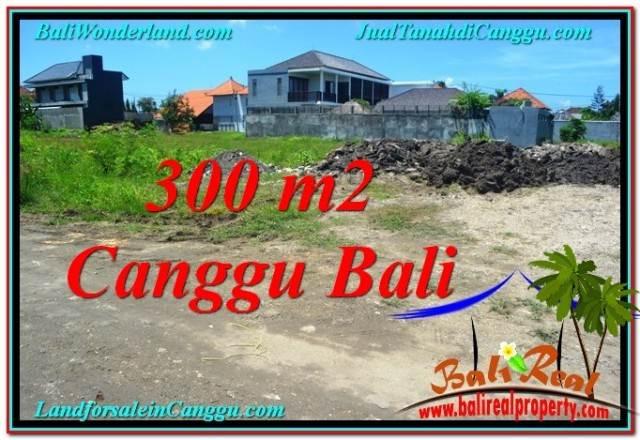 TANAH MURAH di CANGGU 300 m2 Lingkungan villa & Hotel