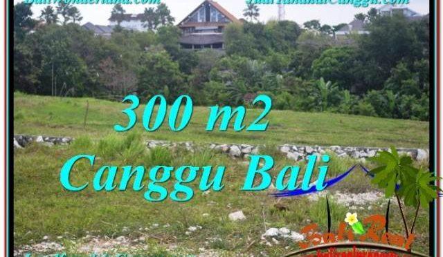 DIJUAL TANAH MURAH di CANGGU Untuk INVESTASI TJCG205
