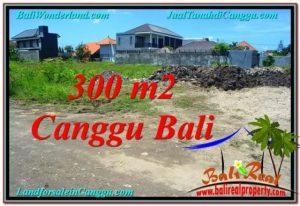 JUAL MURAH TANAH di CANGGU Untuk INVESTASI TJCG203