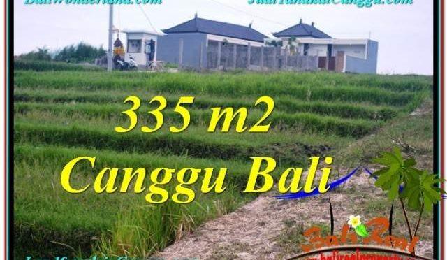 DIJUAL TANAH MURAH di CANGGU 335 m2 di Canggu Umalas