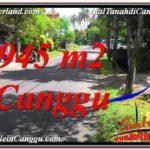 TANAH MURAH di CANGGU BALI DIJUAL 945 m2 di Canggu Pererenan