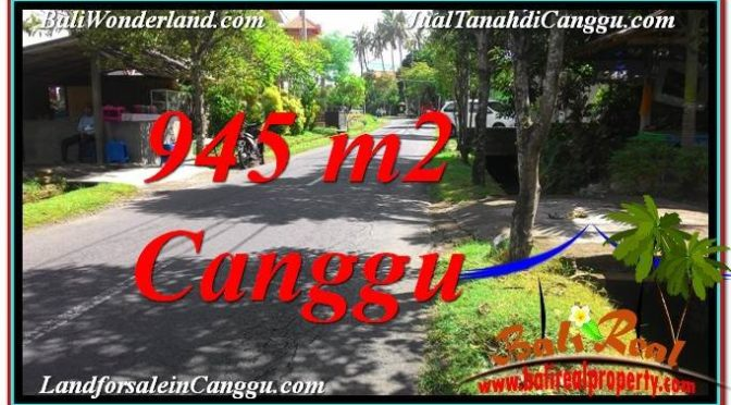 TANAH DIJUAL di CANGGU 9.45 Are di Canggu Pererenan