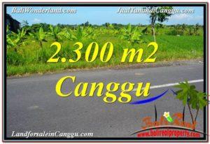 DIJUAL TANAH di CANGGU BALI 23 Are di Canggu Echo Beach