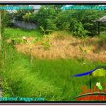 TANAH DIJUAL di CANGGU BALI TJCG212