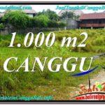 TANAH MURAH di CANGGU DIJUAL TJCG214
